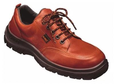 Zapato Prusiano. Cuero Flor Hidrofugado – Puntera De Acero – Suela  Poliuretano Bidensidad. Dielectrico - T/35 Al 48